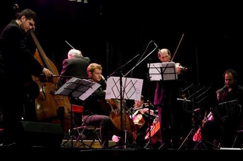 clases de violoncello (cello, chelo, violonchelo) zona norte