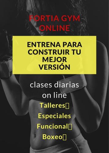 clases en vivo de funcional / talleres especiales / boxeo