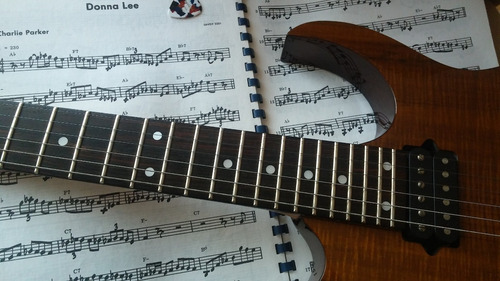 clases guitarra eléctrica y criolla  online skype zoom, meet