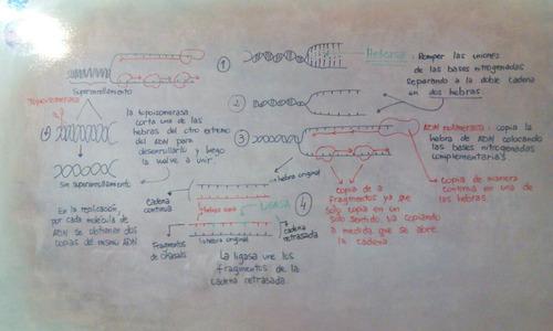 clases particulares de química, física, biología, matemática