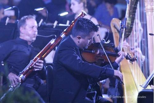 clases virtuales particulares de violín