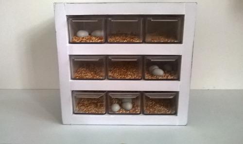 clasificador de huevos para canarios