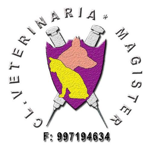 clinica veterinaria magister - consulta atencion veterinaria