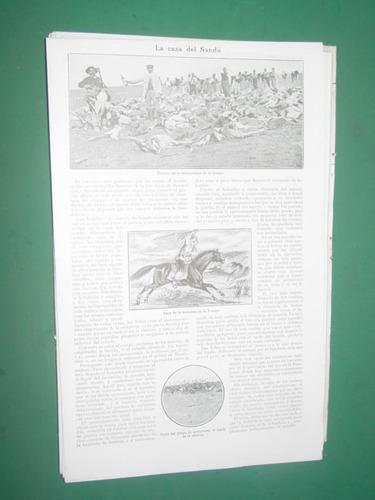 clipping 1 pg criollo gaucho la caza del ñandu campo indios