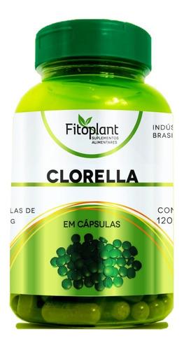 clorella 60 cápsulas 500mg caixa c/ 12 unidades premiun original  fitoplant