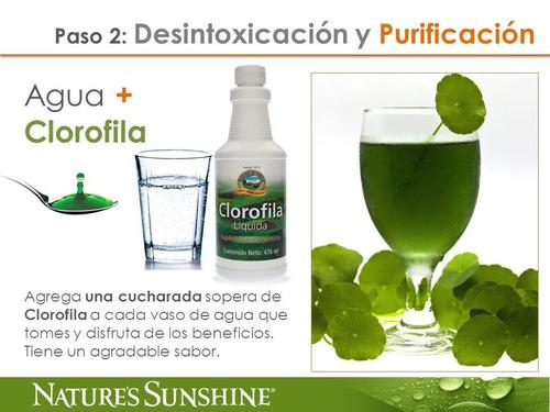 clorofila líquida ayuda a mantener las funciones generales.