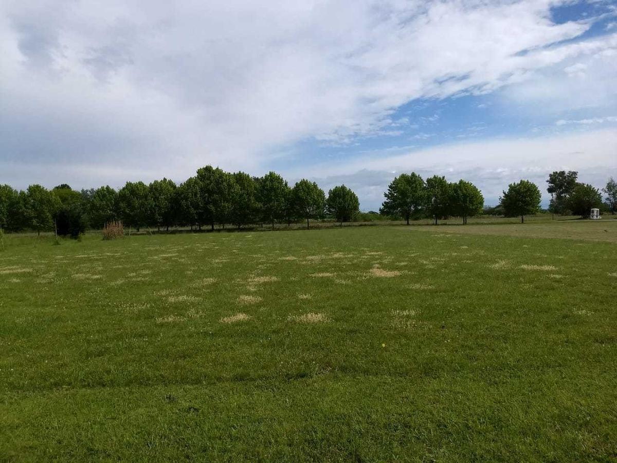 club de campo la ranita - excelente terreno