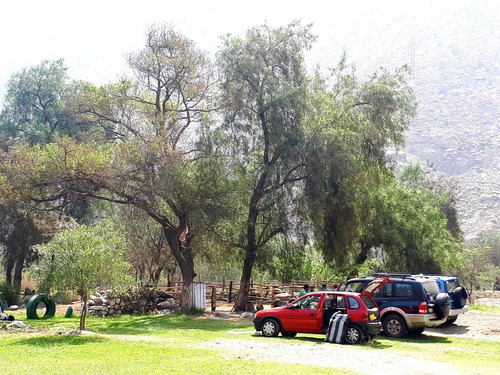 club sol y campo.el lugar ideal para relajarse y divertirse!