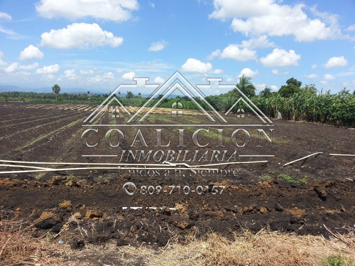 coalición inmobiliaria vende 350 tareas en moca agrícola-