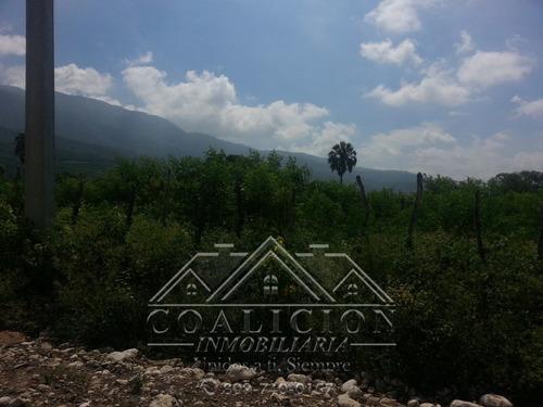 coalicion  vende en  47 tareas (29,516 mts2) villa gonzález