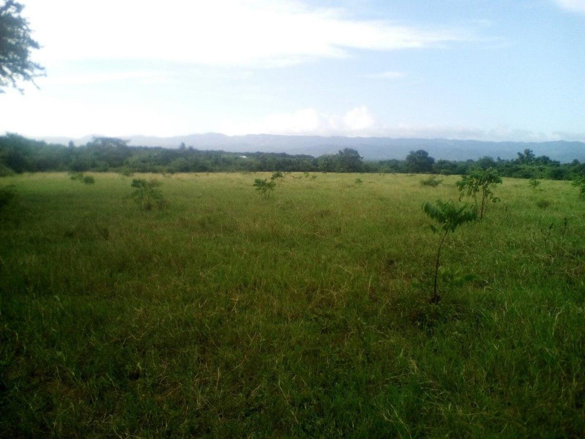 coalicion vende finca en moca 300 tareas para ganadería
