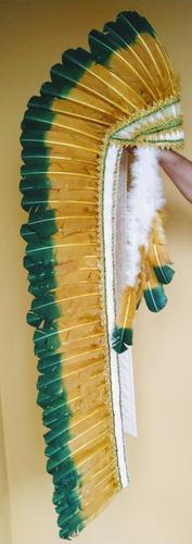 cocar indígena penas coloridas