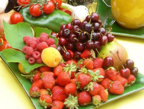 [cod. 039] gastronomía - dieta metabólica sin calorías