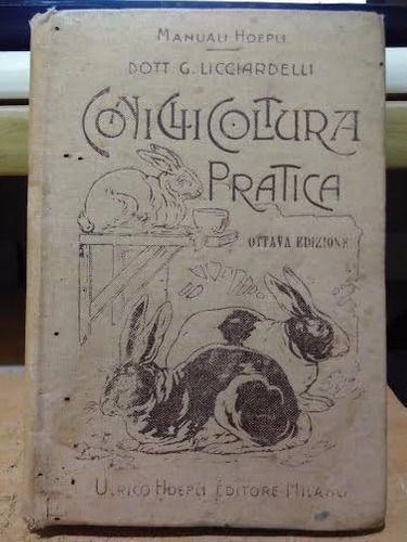 coelhos na prática livro raro em italiano 1920 - ilustrado