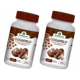 Cogumelo Da Vida 120 Cápsulas 500 Mg Sol + Cloreto Magnésio