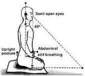 cojines para meditación.zafus y zanikus