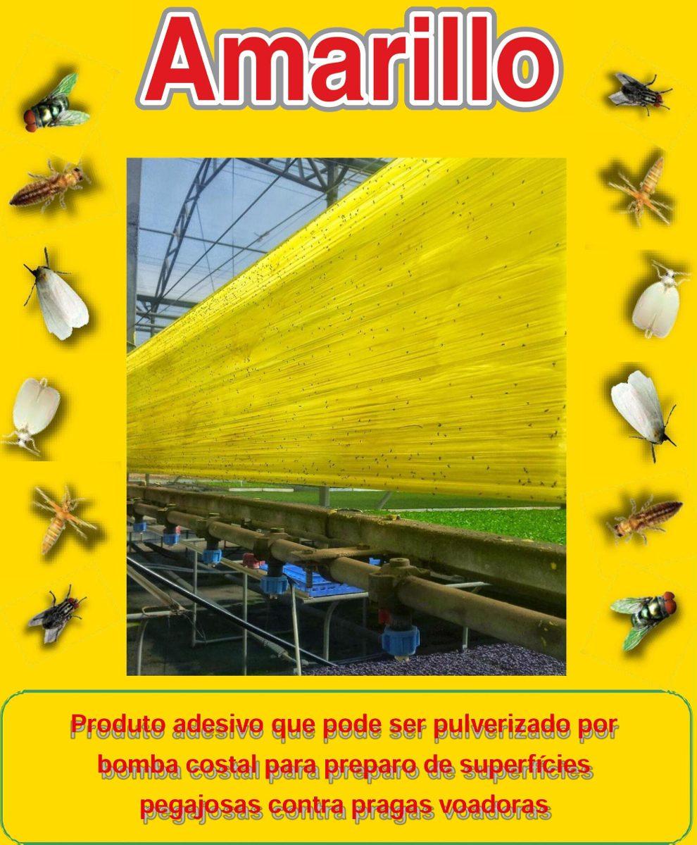 cola entomológica amarillo captura de insetos 1 litro r 169 90 em