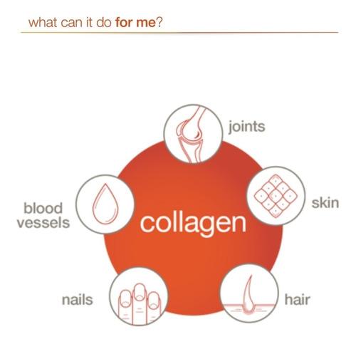 colágeno hidrolizado para hombres x 290 tabs marca yputheory