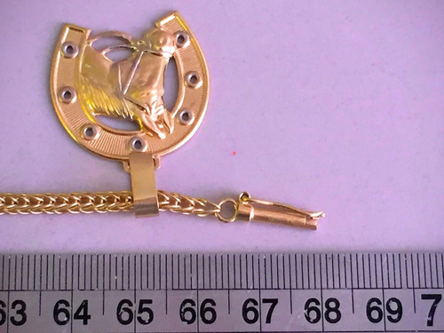 colar em ouro com pingente ferradura