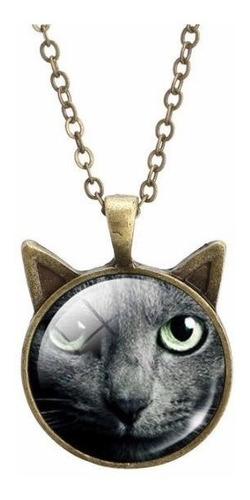 colar gato fabinho (cinza)