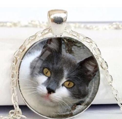 colar gato thuco