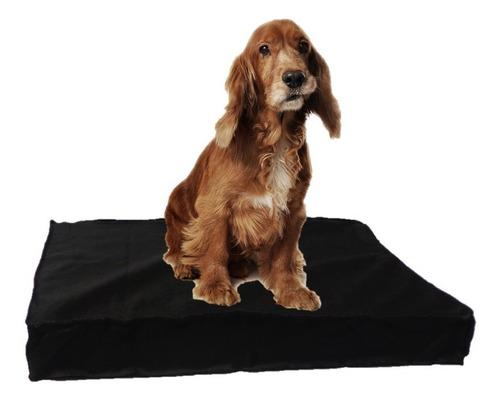 colchón cama perros placa de espuma antidesgarro 90x60