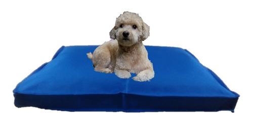 colchón liso antidesgarro 70x50x8 cama perros mascotas gatos