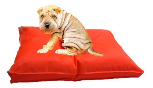 colchón liso antidesgarro 90x60x10 cama perros mascotas gato