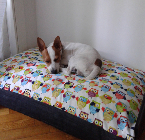 colchón para perros (70cm x 100cm x 15cm)