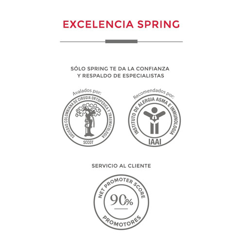 colchon spring special dream sencillo + 2 alm + protector.