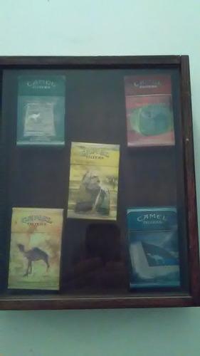 coleccion camel
