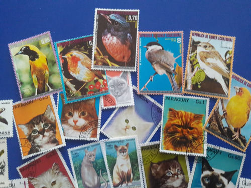 coleccion de 39 estampillas de aves y gatos
