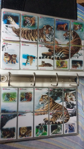 coleção 1138 cartões em séries china temas - tigres e leões