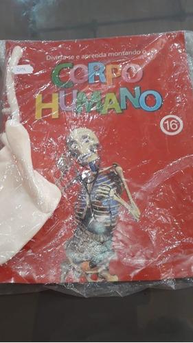 coleção corpo humano - editora rba - vários fascículos