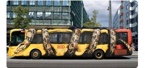 colectivo ómnibus 12 mts para publicidad, con o sin chofer