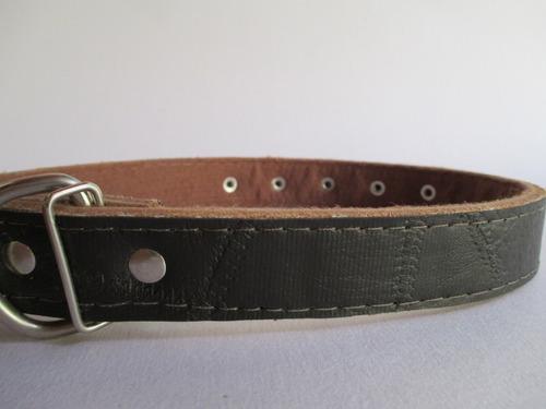 coleira cachorro couro forrado marrom com detalhes nº7