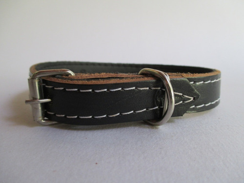 coleira cachorro couro forrado preto nº1 fivela de metal