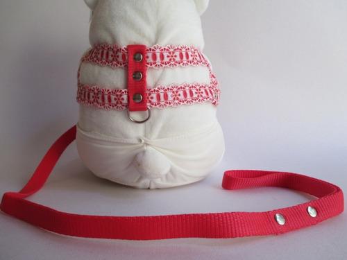 coleira cachorro peitoral e guia nylon vemelha com renda nº2