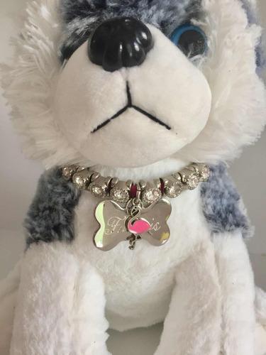 coleira - colar para cachorros com nome e telefone gravado