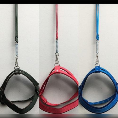coleira modelo peitoral para cachorro porte medio/grande
