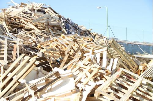 coleta de madeiras