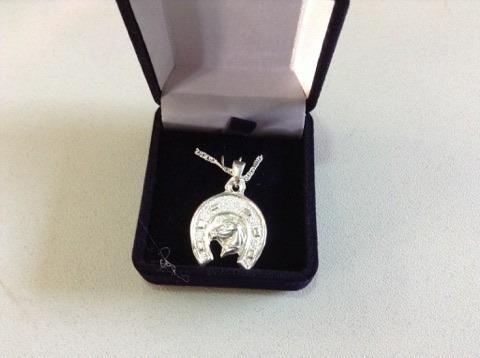 colgante de plata  le y incluye cadena /bauldeaperos