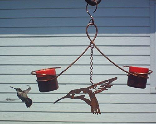 colibrí de cobre doble alimentador  dripfree abeja y dise
