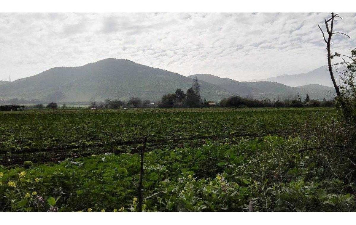 colina-reina norte