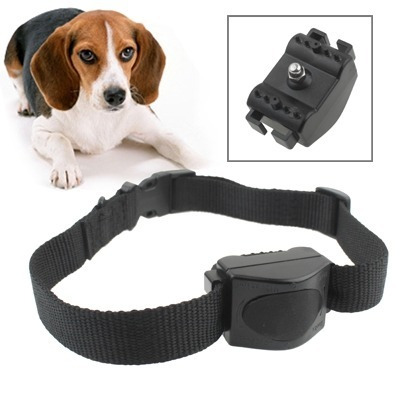 collar descargas perro