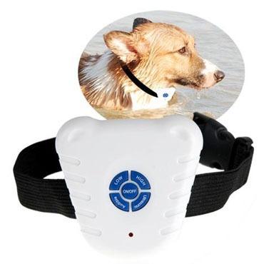 collar antiladrido ultra-sónico para entrenamiento canino!