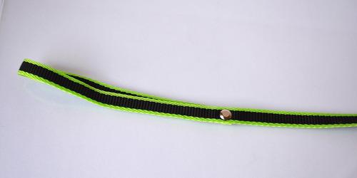 collar de nylon con correa para perro chico