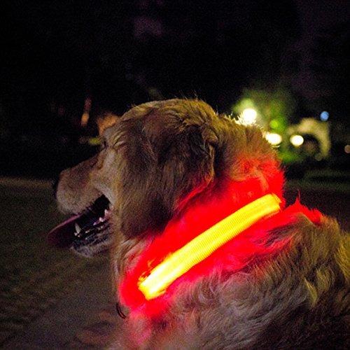 collar de perro b.seen correa de nylon led con el anillo d,