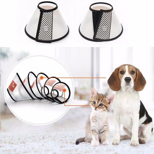 collar isabelino para mascota