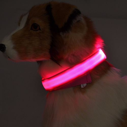collar led para mascotas raza pequeña amarillo y bco valbar
